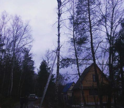 Опиловка деревьев и монтаж опор